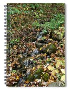 Wooded Creek Spiral Notebook