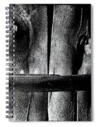 Wooden Corset  Spiral Notebook