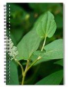 Woodland Flower 1 Spiral Notebook