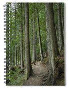Woodland Forest Path Spiral Notebook