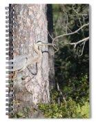 Woodland Great Blue Heron Spiral Notebook