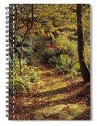 Woodland Path, Mount Stewart, Ards Spiral Notebook