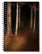 Woods At Night Spiral Notebook