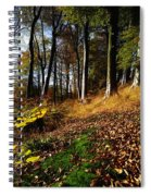 Woods During Autumn Spiral Notebook