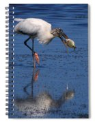 Woodstork Catches Fish Spiral Notebook