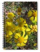 Woolley Ragwort Spiral Notebook