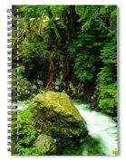 Working Around The Big Rock   Spiral Notebook