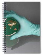 World Inside A Petri Dish Spiral Notebook