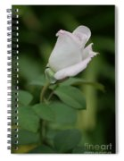 World War II Memorial Rose Spiral Notebook