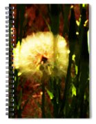 Worlds Within Worlds Spiral Notebook