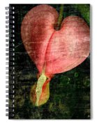 Worn Heart  Spiral Notebook