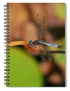 Wounded Wing Spiral Notebook