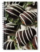 Wrapped In Chocolate Spiral Notebook