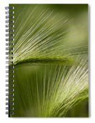 Wyoming Grassess Spiral Notebook