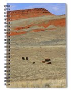 Wyoming Red Cliffs And Buffalo Spiral Notebook