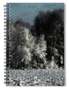Wyoming Snowstorm October 2011 Spiral Notebook