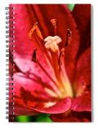 X Marks The Spot Spiral Notebook