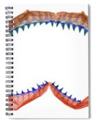 X-ray Of Shark Jaws Spiral Notebook