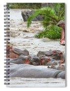 Yawning Hippo Hippopotamus Amphibius Spiral Notebook