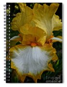 Yellow And White Iris Spiral Notebook