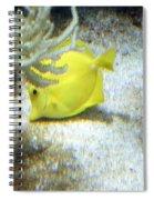 Yellow Angelfish Spiral Notebook