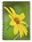 Yellow Artichoke Spiral Notebook