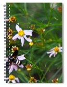 Yellow Banded Black Fly 1 Spiral Notebook