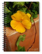 Yellow Blossom On Planter Spiral Notebook