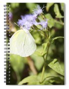 Yellow Butterfly Feeding On Violet Flower Spiral Notebook