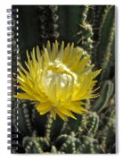 Yellow Cactus Flower Spiral Notebook
