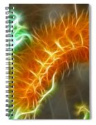 Yellow Caterpillar Fractal Spiral Notebook