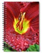 Yellow Core Spiral Notebook