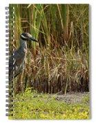 Yellow-crowned Night-heron Spiral Notebook