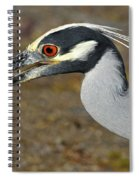 Yellow Crowned Night Heron With Catch Spiral Notebook