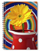 Yellow Daisy In Red Pitcher Spiral Notebook