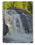 Yellow Dog Falls 4192 Spiral Notebook