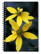 Yellow Duet Spiral Notebook