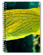 Yellow Fellow Spiral Notebook