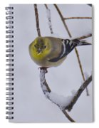 Yellow Finch Cold Snow Spiral Notebook