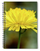 Yellow Flower And Bokeh Spiral Notebook