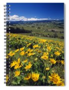 Yellow Flowers Blooming, Hood River Spiral Notebook