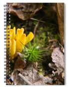 Yellow Fungus 1 Spiral Notebook