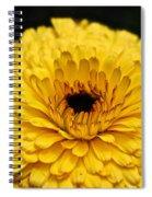 Yellow Gold Spiral Notebook