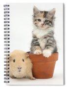 Yellow Guinea Pig And Kitten Spiral Notebook