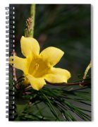 Yellow Jessamine Spiral Notebook