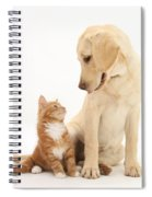 Yellow Lab And Ginger Kitten Spiral Notebook