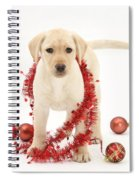 Yellow Lab Pup At Christmas Spiral Notebook