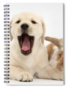 Yellow Lab Puppy With Rabbit Spiral Notebook