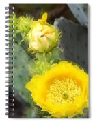 Yellow Lace Unveiled Spiral Notebook