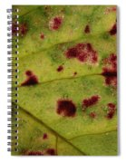 Yellow Leaf With Red Spots 2 Spiral Notebook